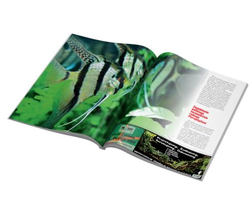 Skład magazynu - rozkładówka